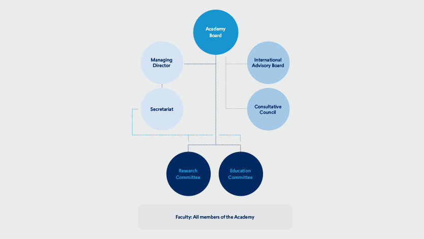 Danish Diabetes Academy organisational structure