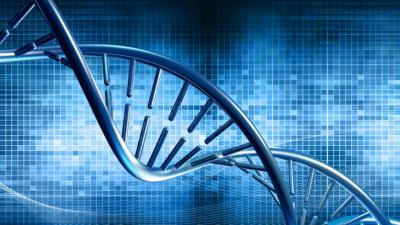 Genetics of type 2 diabetes: the power of isolated populations -